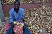 Africa's youth and abundant arable land are a potential winning combination