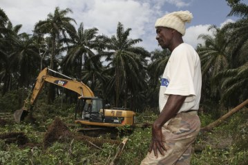 How a project with good aims delivered bitter outcomes in Sierra Leone