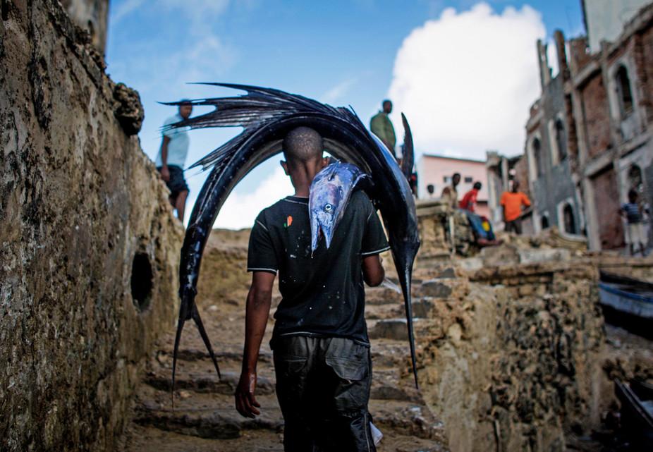 Économie bleue en Afrique (1) : des ressources naturelles très disputées
