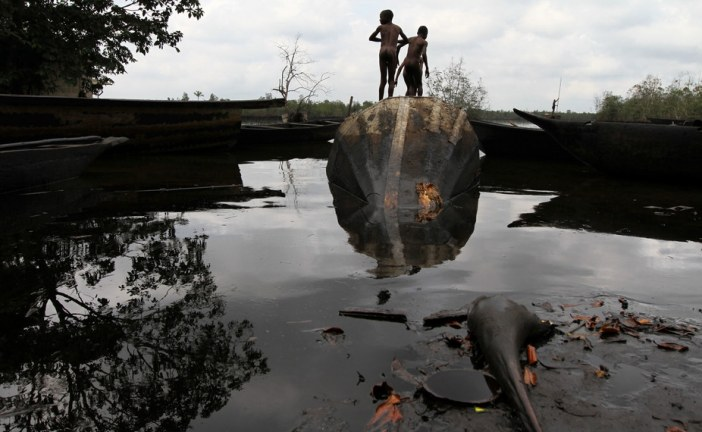 What President Buhari can do to help Ogoniland clean up oil pollution
