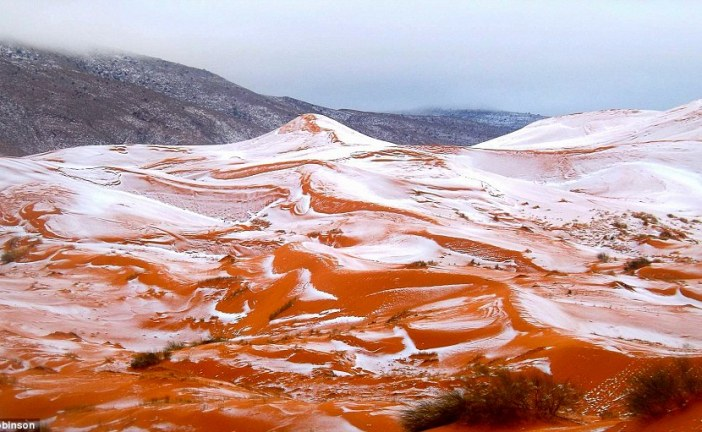 Snow falls in the Sahara for the first time in 37 YEARS