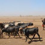 Could Food Shortages Topple Tanzania?