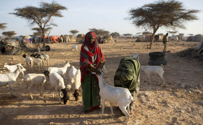 UN approves $22 million loan to boost agricultural work to prevent famine in Somalia