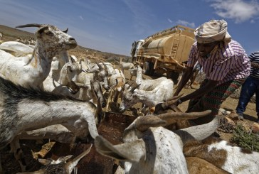 Three reasons for optimism in Somalia