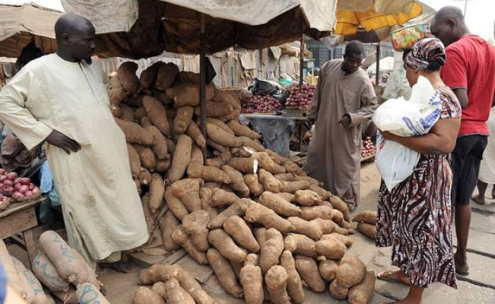 Nigeria starts exporting yams to Europe