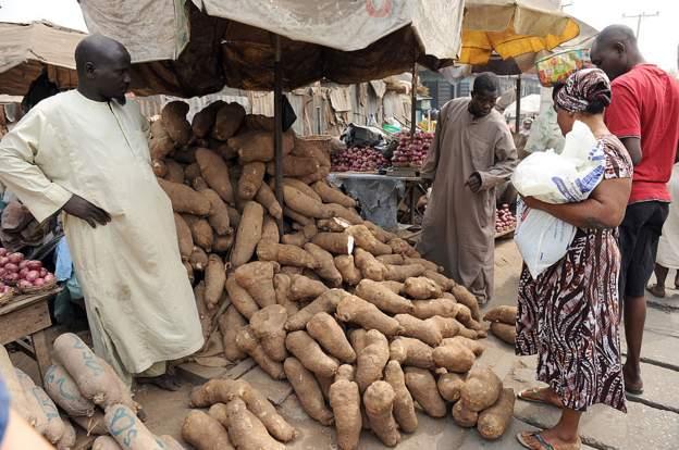 Nigeria starts exporting yams to Europe