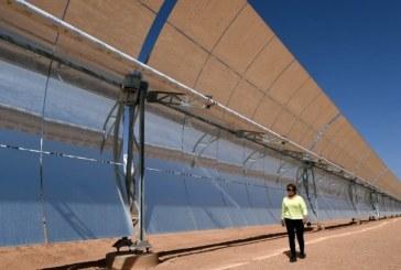 L'Afrique fait le pari de l'« industrialisation verte »