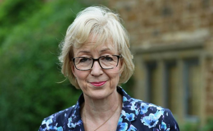 Theresa May under pressure to sack Andrea Leadsom over 'stupid' paedophile comments