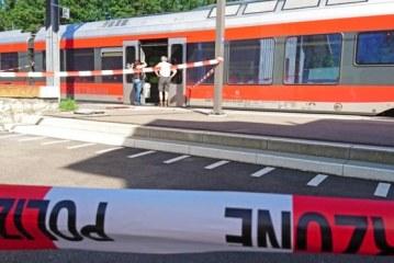 Switzerland Salez attack: Knifeman sets fire to Swiss train