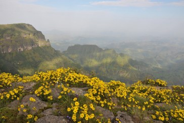 Sept destinations pour découvrir l'Afrique grandeur nature