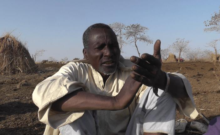 Pastoralists fleeing Boko Haram face new challenges in Cameroon