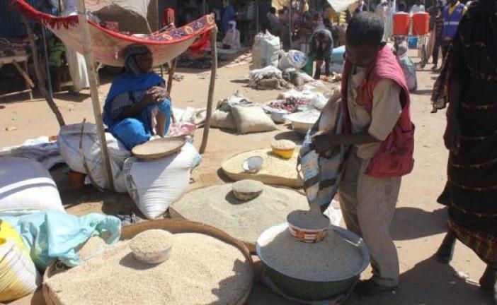 Tchad: les ravages de la faim