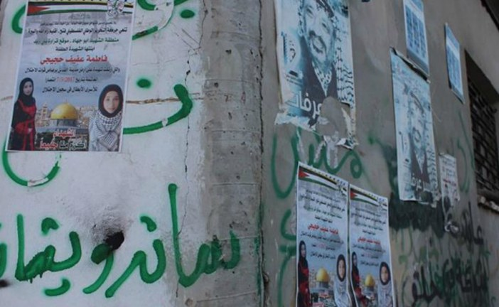 Israel accused of 'killing children with impunity': Fatima Hjeiji: Seventh child killed by Israel in 2017