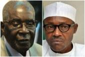 Mugabe and Buhari under fire on Twitter