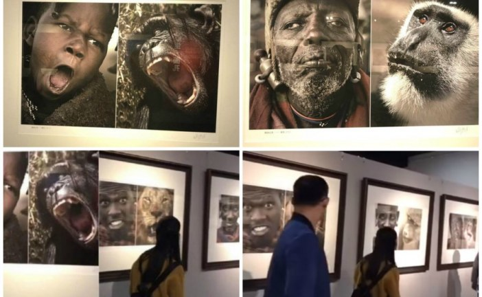 Chinese museum pulls down photos pairing Africans with animals